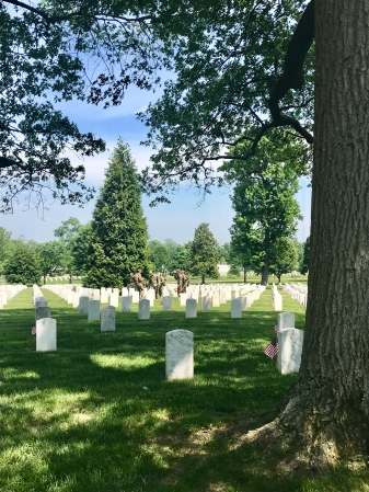 Arlington National Cemetary (1)